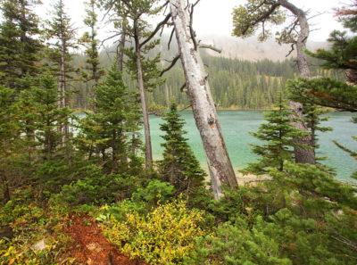 Fairy Lake, Montana