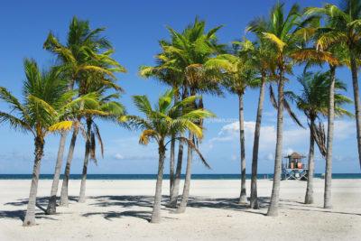 My Paradise -- Key Biscayne Beach