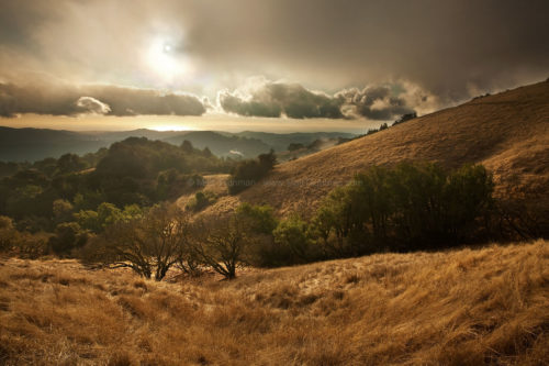 Fine art stock photograph from Russian Ridge Open Space, California. The first rain storm of the season presides over dry golden hillsides.