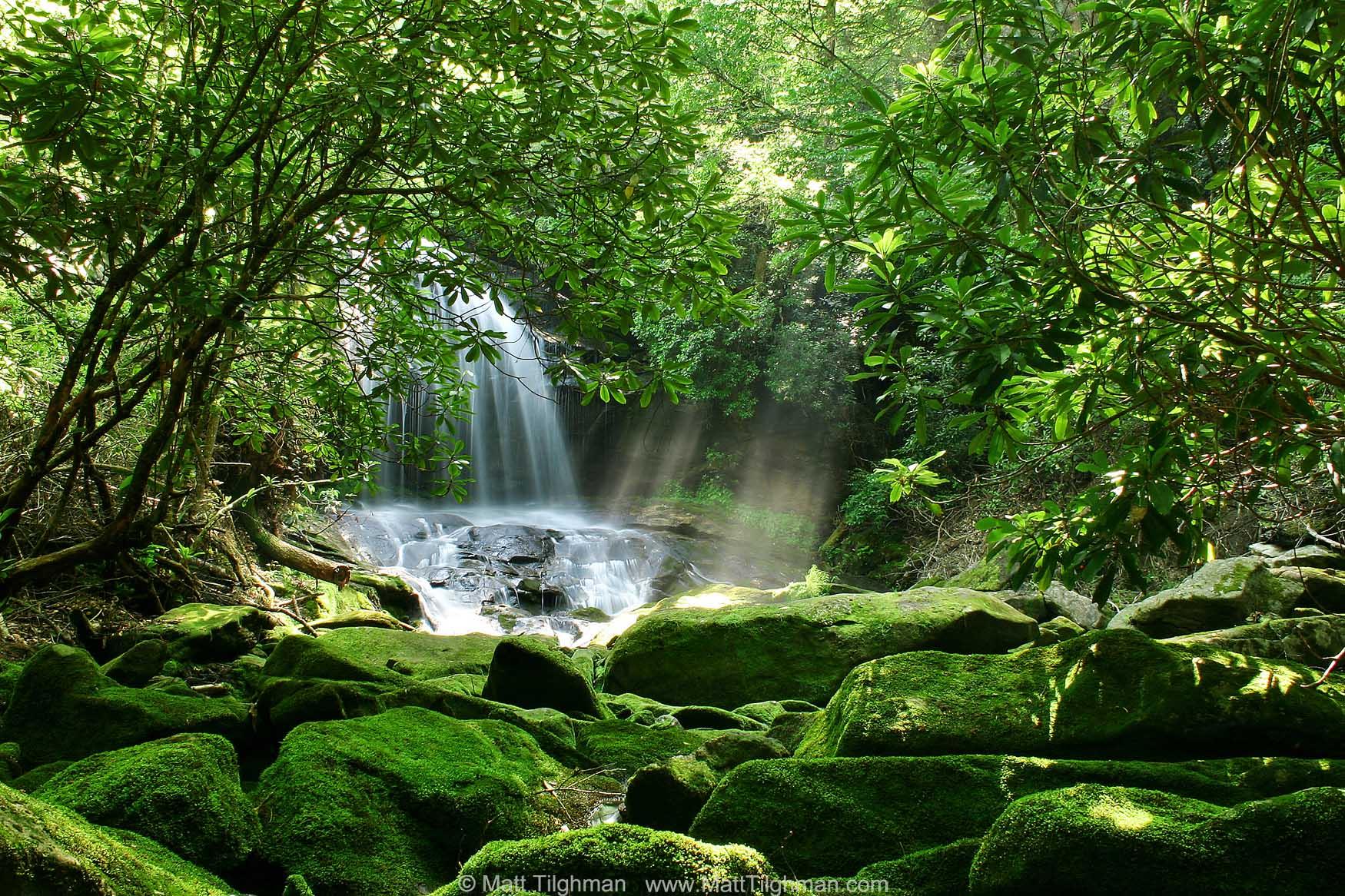 Secret Paradise - Hidden Waterfall