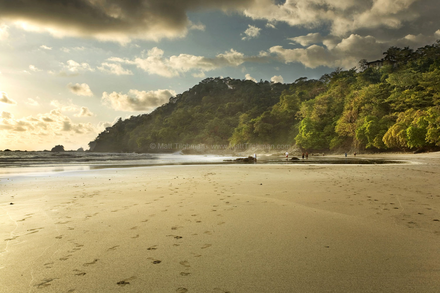 Fine art stock photograph of Manuel Antonio National Park, in Costa Rica. The late afternoon light turns both the beach and jungle a warm gold, echoing the heat of the tropical sun.