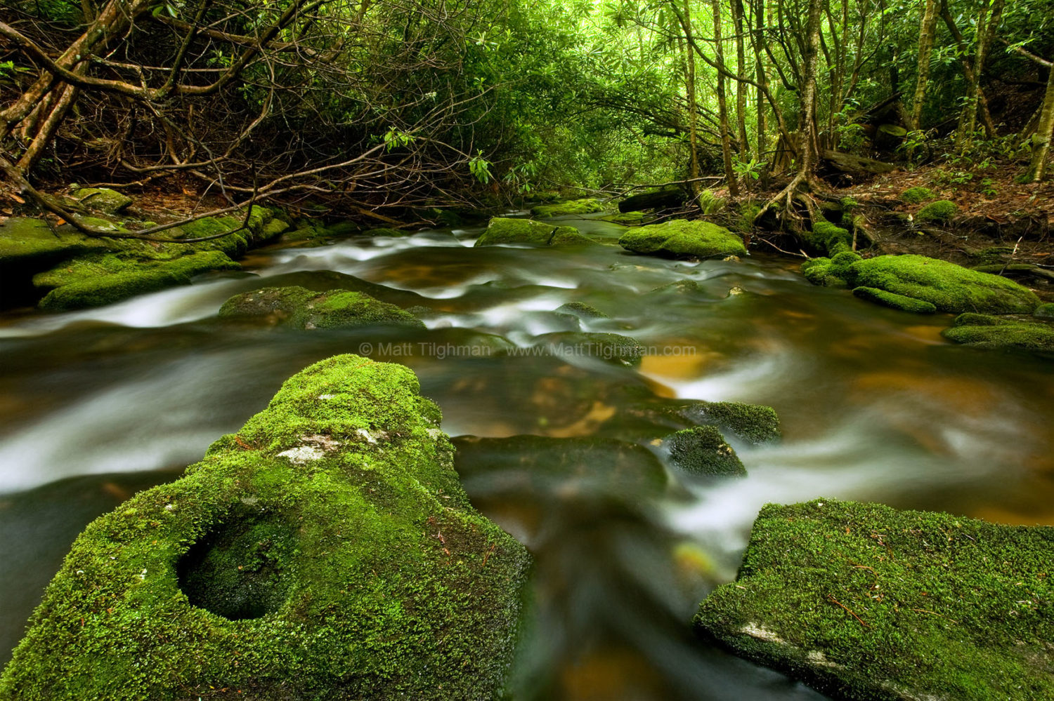 Fine art stock photograph of lush Appalachian mountain stream. The powerful stream wears down the hard granite boulders with constant unstoppable erosion.