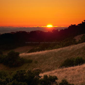 Sun's Last Gasp - Sunset in Santa Cruz Mountains
