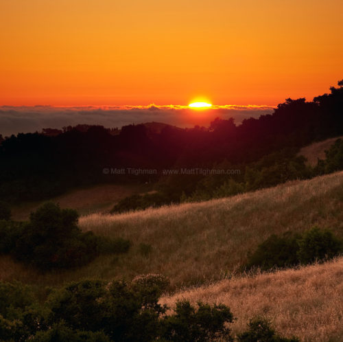 Fine art stock photograph from Russian Ridge Open Space, in the Santa Cruz Mountains of California. The sun slowly sets behind distant fog.