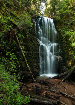 Fine art stock landscape photograph of Berry Creek Falls, inside California's lush Big Basin Redwoods State Park.