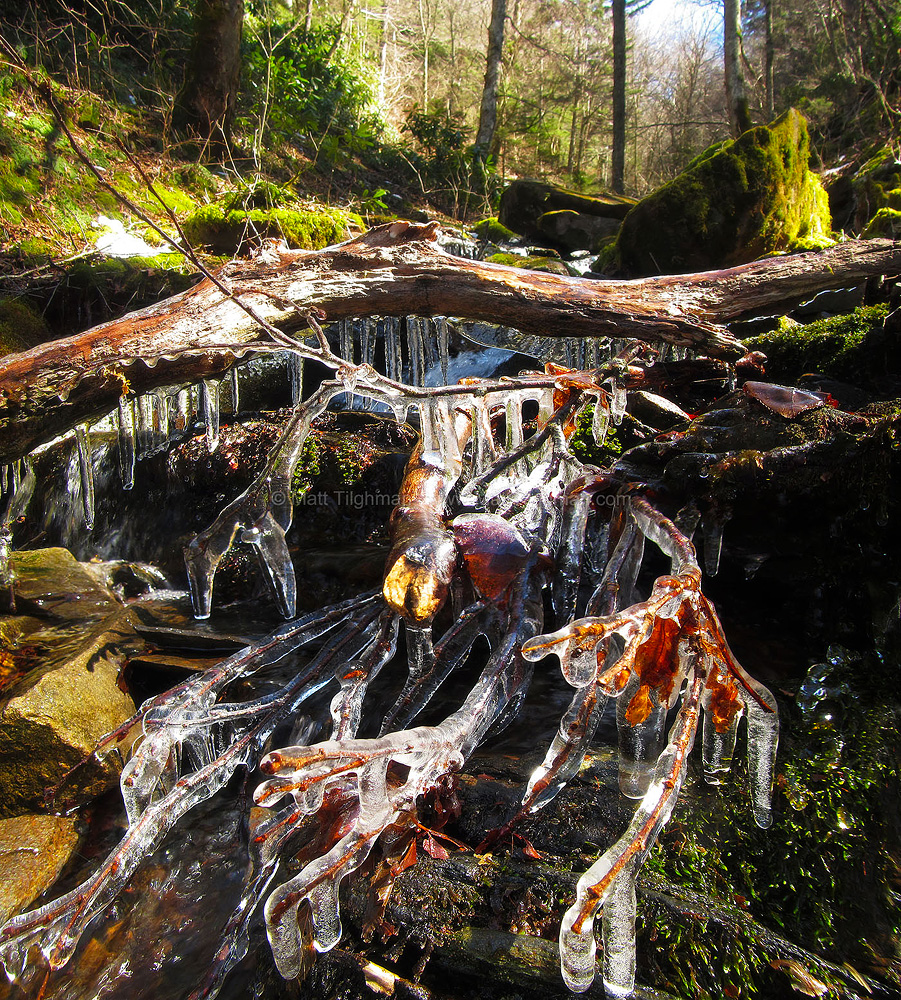 Fine art stock landscape photograph of a freezing rain in Great Smoky Mountains National Park. Normal stream bed debris is turned into a beautiful ice sculpture.