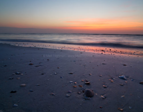 Fine art stock photograph of a tranquil morning over St Augustine Beach, Florida, with seashells in the foreground.