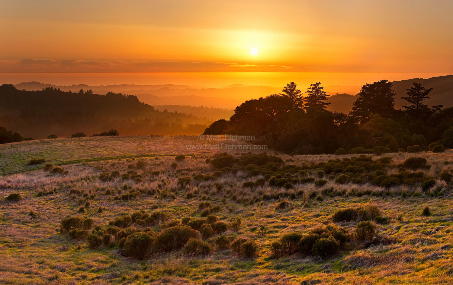 Fine art stock landscape photograph from Russian Ridge California. A beautiful sunset in the Santa Cruz Mountains, with a rare fogless Pacific Ocean beyond