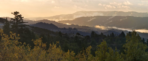 Fine art stock landscape photograph of California's Santa Cruz Mountains. Seen from Russian Ridge, the hills are cloaked in the morning fog which follows a storm.