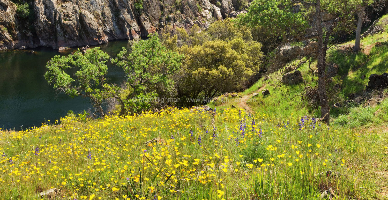 Fine art stock landscape photograph of Spring meadows along California's Stanislaus River. The Sierra Nevada foothills are bursting with poppies and lupine.