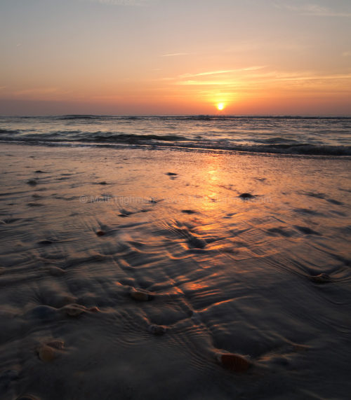 Fine art stock landscape photograph of gentle waves rinsing the sea shells on St Augustine Beach, Florida, at sunrise.