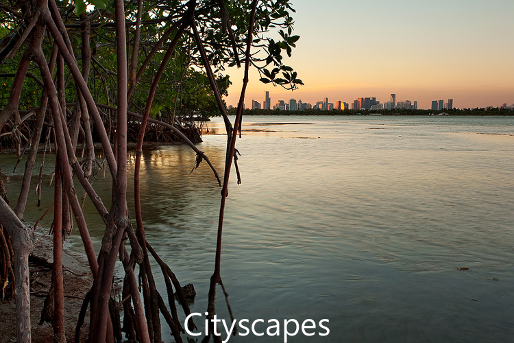 Link to city photograph gallery