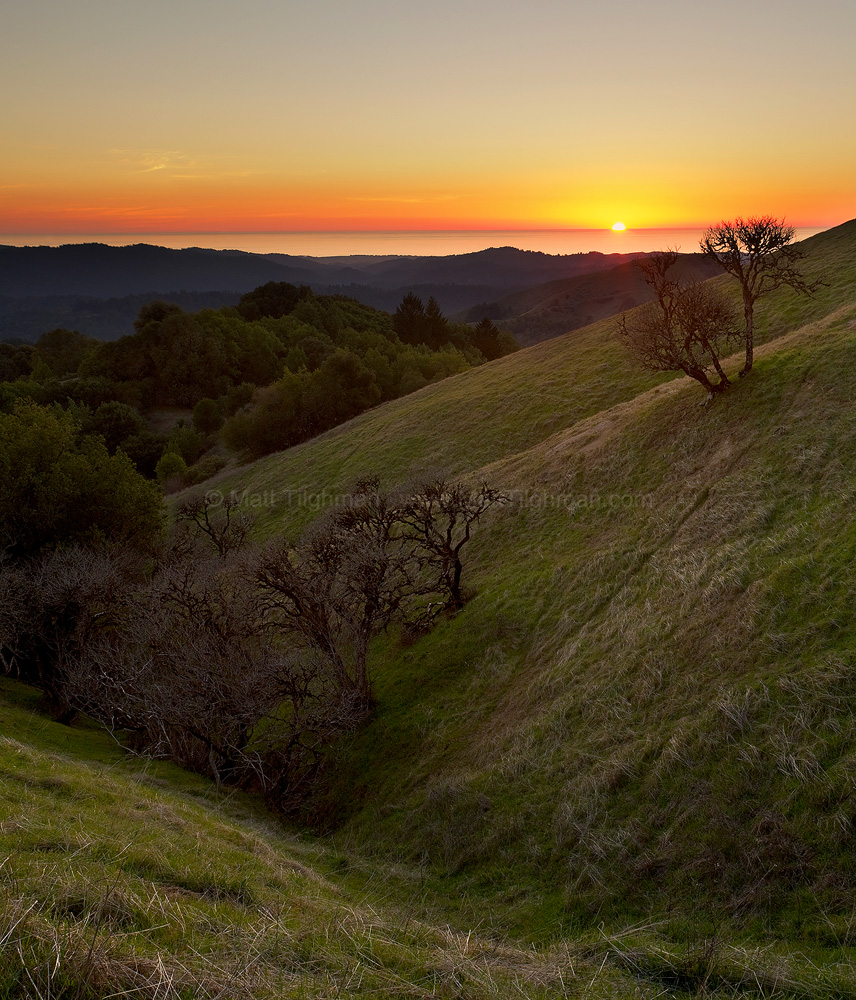 Fine art stock photograph from Russian Ridge Open Space, California. This winter day afforded a rare fogless glimpse of the beautiful Pacific Ocean at sunset.