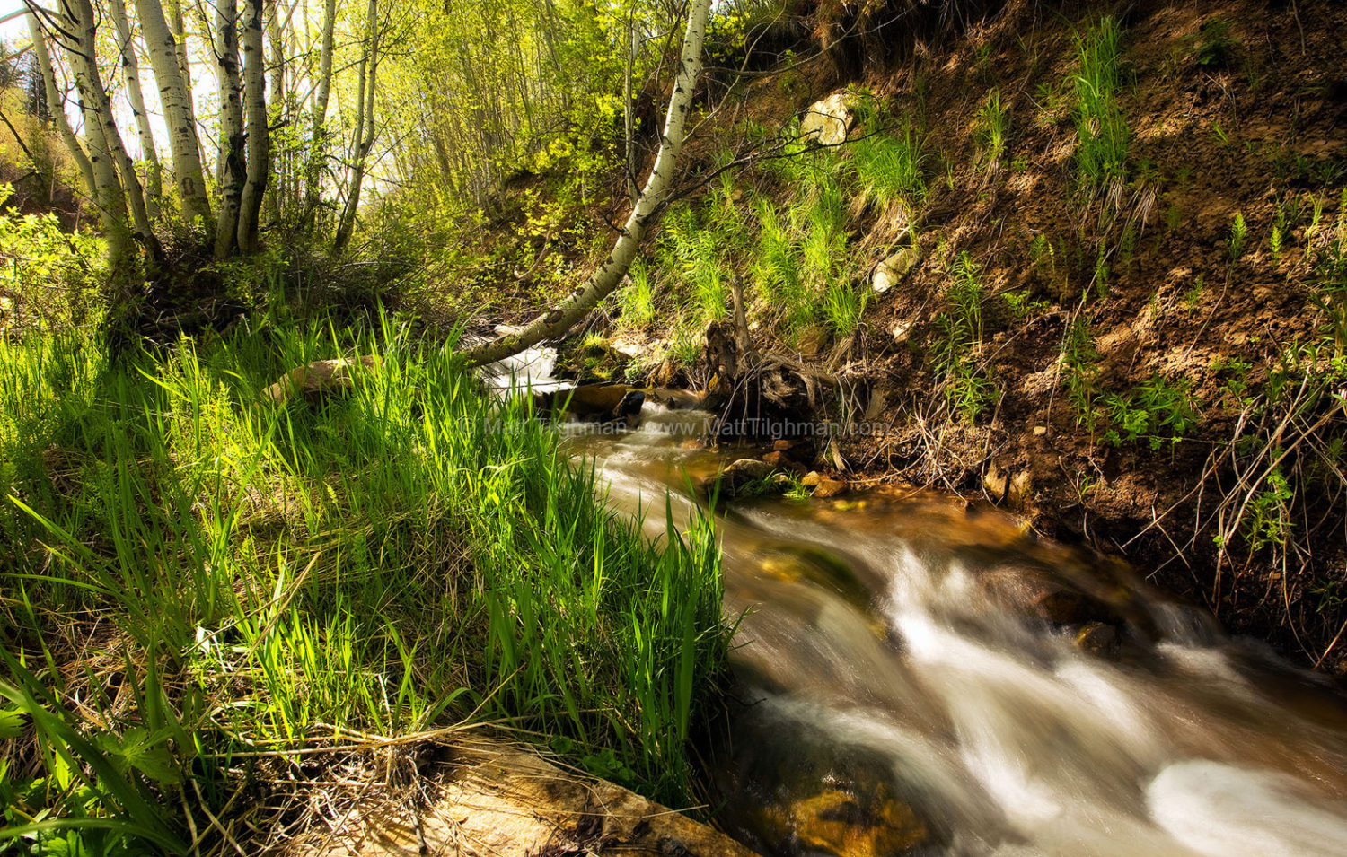Fine art stock landscape photograph of a seasonal stream of snowmelt tumbling down the hillsides of a Rocky Mountain forest near Park City, Utah