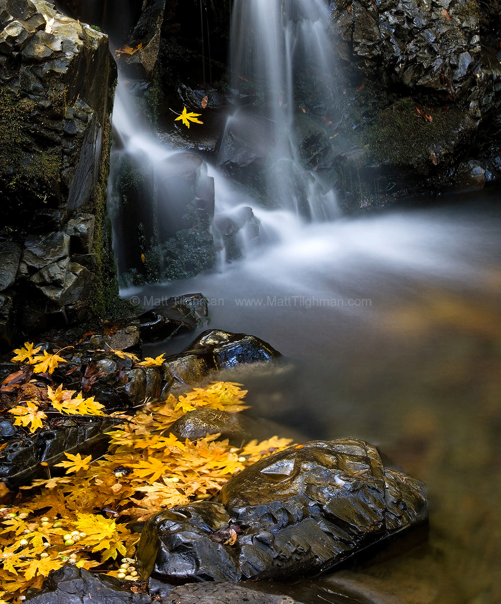 Fine art stock nature photograph from Uvas Canyon, California. In autumn, the fallen leaves congregate around the base of Granuja Falls, adding some bright color.