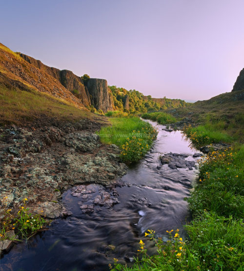 Fine art stock photograph from North Table Mountain Ecological Preserve, California. A small creek meanders through poppy meadows, before becoming Phantom Falls.