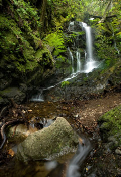 Fine art stock photograph of Black Rock Falls, a beautiful waterfall amidst the lush green forests of Uvas Canyon, in Santa Clara California.