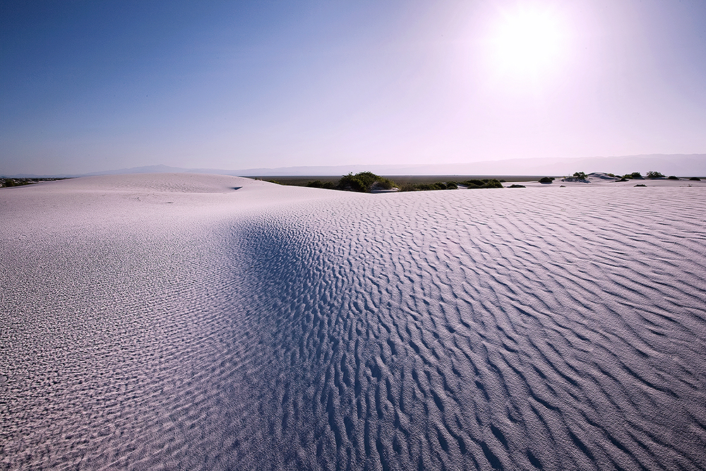 Fine art stock landscape photograph of the bright morning sun beating down on the beautiful gypsum sand dunes of White Sands National Monument, New Mexico.