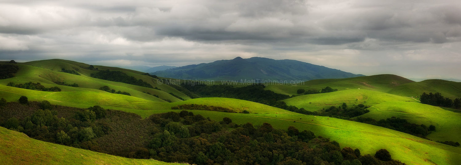 Fine art stock photograph of Dry Creek/Pioneer Park, in the foothills of California's Diablo Range, as the onslaught of winter storms turns the hillsides green.