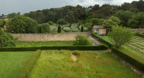 Fine art stock photograph of beautiful lush poppy and lavender gardens at the Saint Paul de Mausole Monastery, near St Remy, Provence, France.