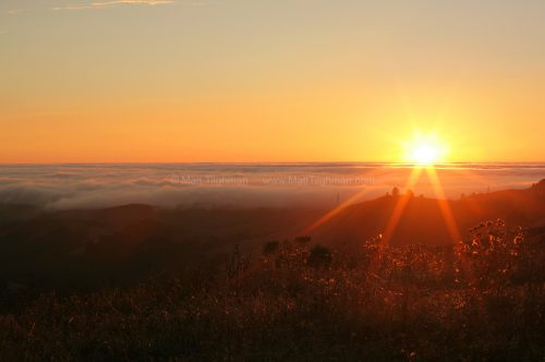 Fine art stock photograph from Windy Hill, in California's Santa Cruz Mountains. A beautiful sunset over gently rolling hills and the fog-covered Pacific Ocean.